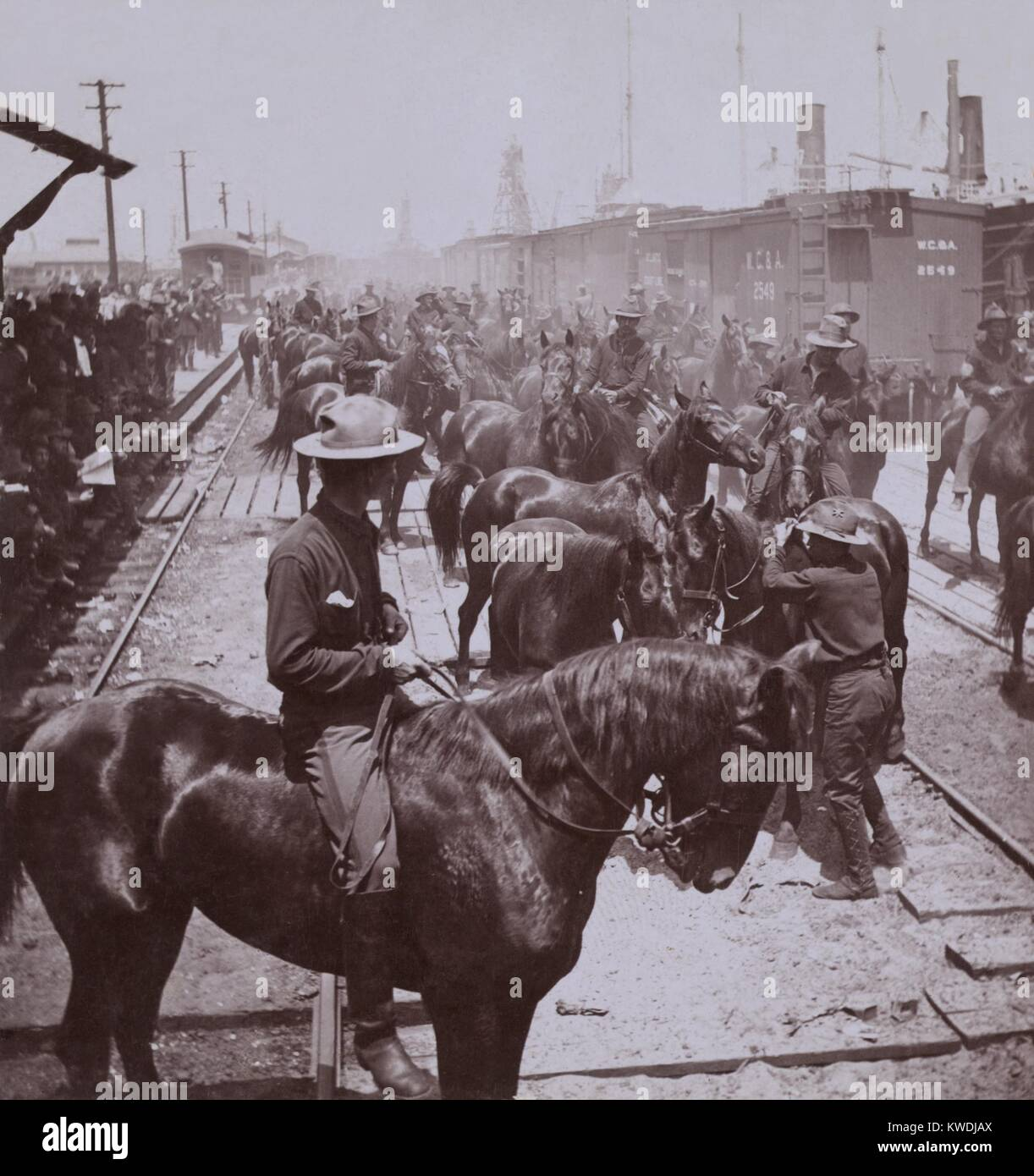 Rough Riders arrival at Tampa, Florida for transport to Cuba. Theodore Roosevelts 1st United States Volunteer Cavalry, - Stock Image