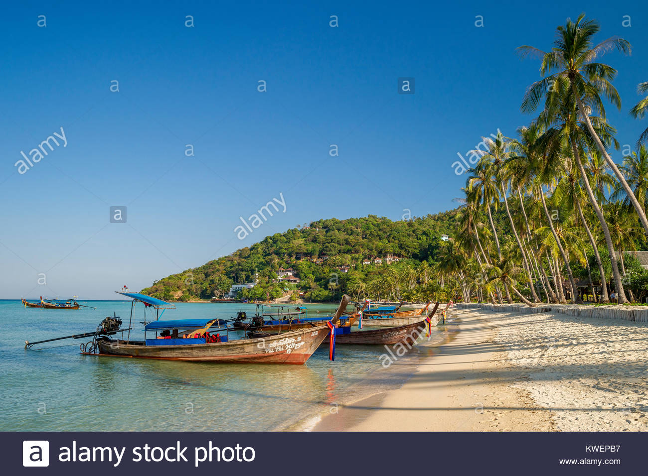 long-tail-boats-in-loh-bagao-bay-koh-phi