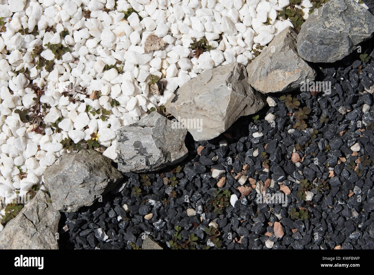 Black and White Decorative Garden Stones Divided Contrasting each other - Stock Image