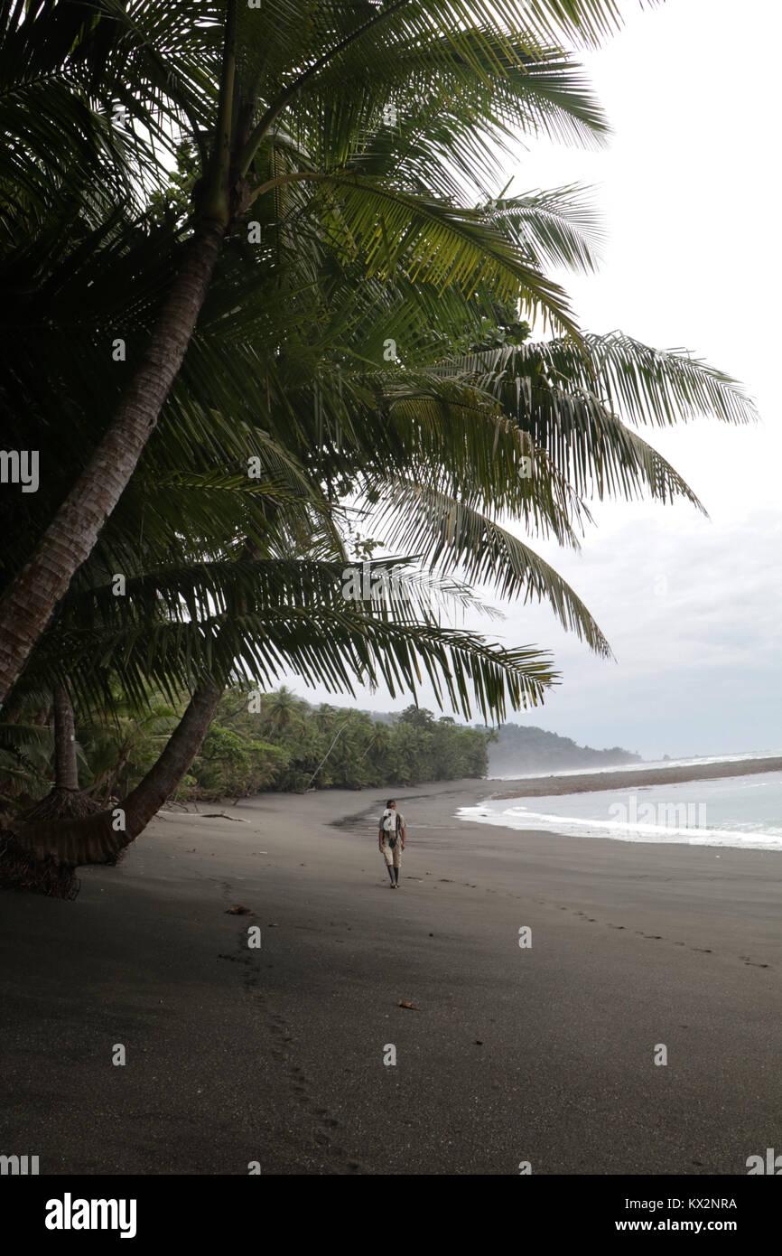 Hiker on beach Corcovado national Park Costa Rica Osa Peninsula - Stock Image
