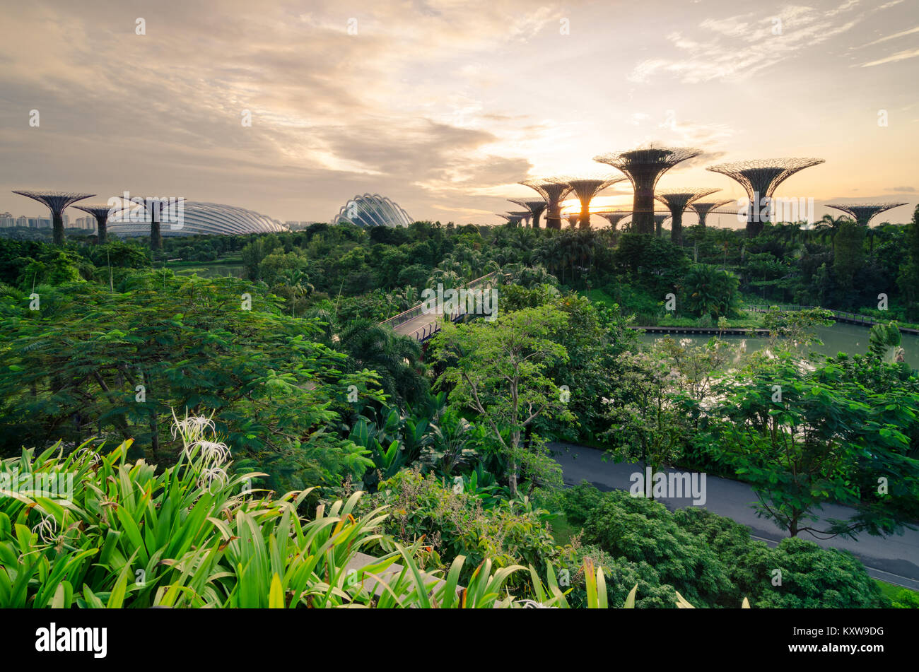 Beautiful Sunrise At Garden By The Bay. Calm Water At The Morning ...