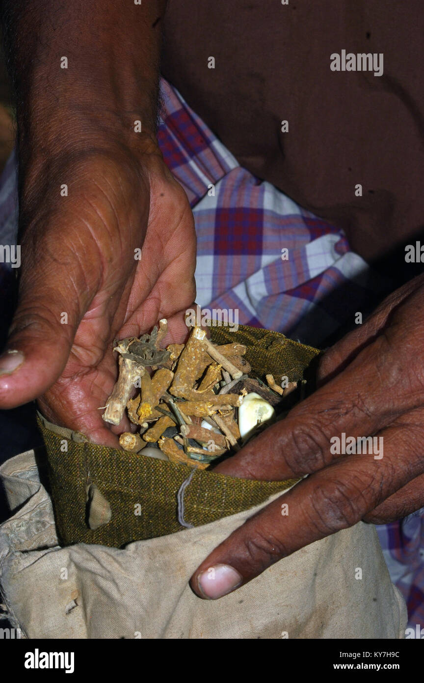 Snake catcher shows the bag of herbs used to pacify snakes, Tamil Nadu, South India. The bag of herbs is placed - Stock Image