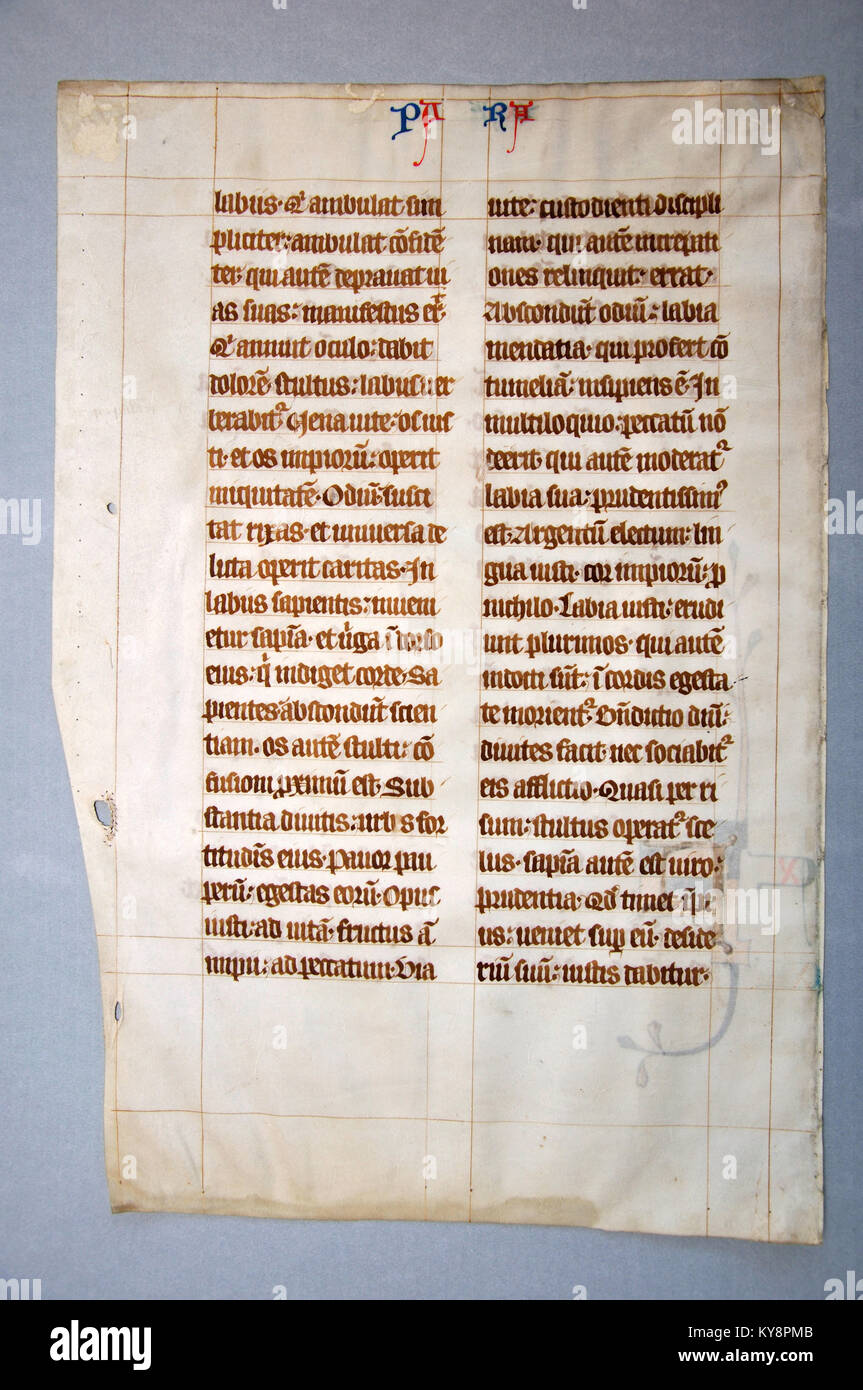Page from a 14th Century Latin Vulgate Bible, (Book of Jeremiah) written in England on vellum. (Fragment 13) From - Stock Image