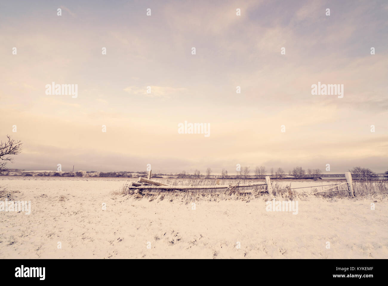 Wooden fence in a winter landscape with snow on a field in the morning - Stock Image