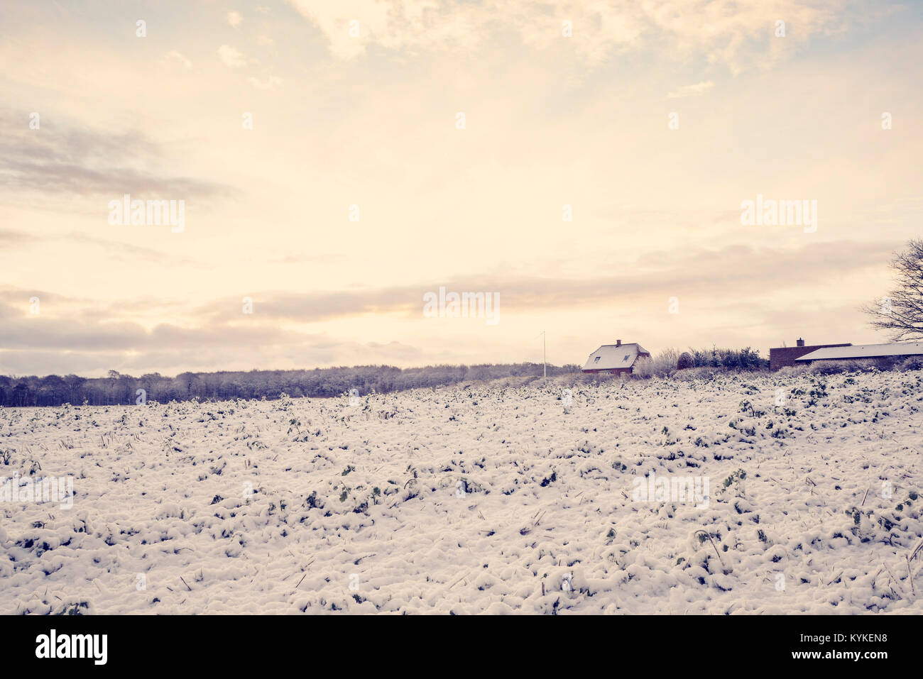 Small farm house in a rural scenery with sunrise on a cold morning with snow on a field in a countryside landscape - Stock Image