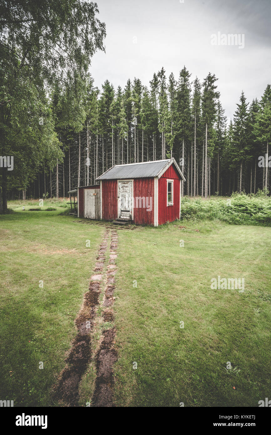 Trail leading up to a small red cabin in the woods surrounded by tall pine trees in Sweden - Stock Image