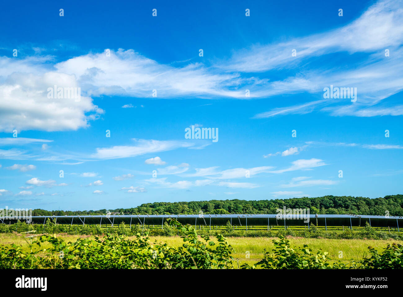Solar cell park on a green field with blue sky in the summer producing eco friendly energy - Stock Image