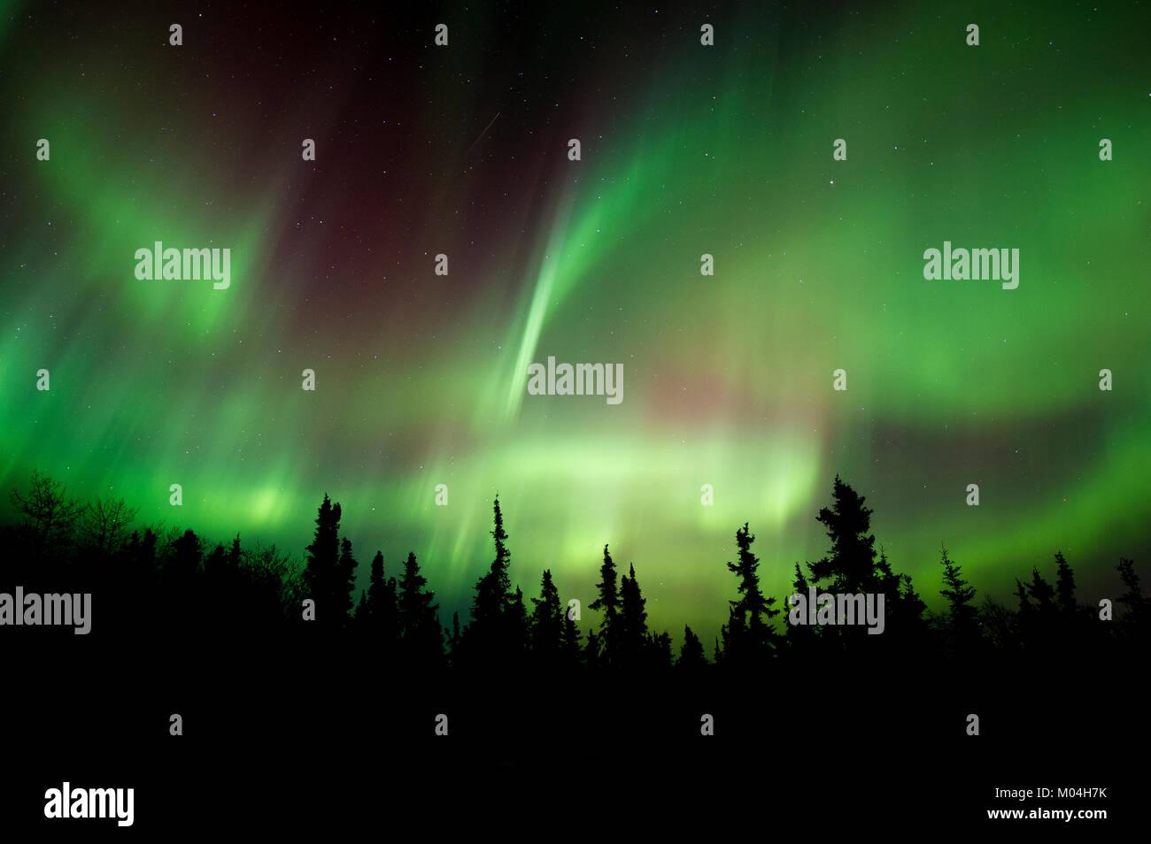 Aurora borealis, northern lights, north of Fairbanks, Alaska. March 2016, by Dominique Braud/Dembinsky Photo Assoc Stock Photo