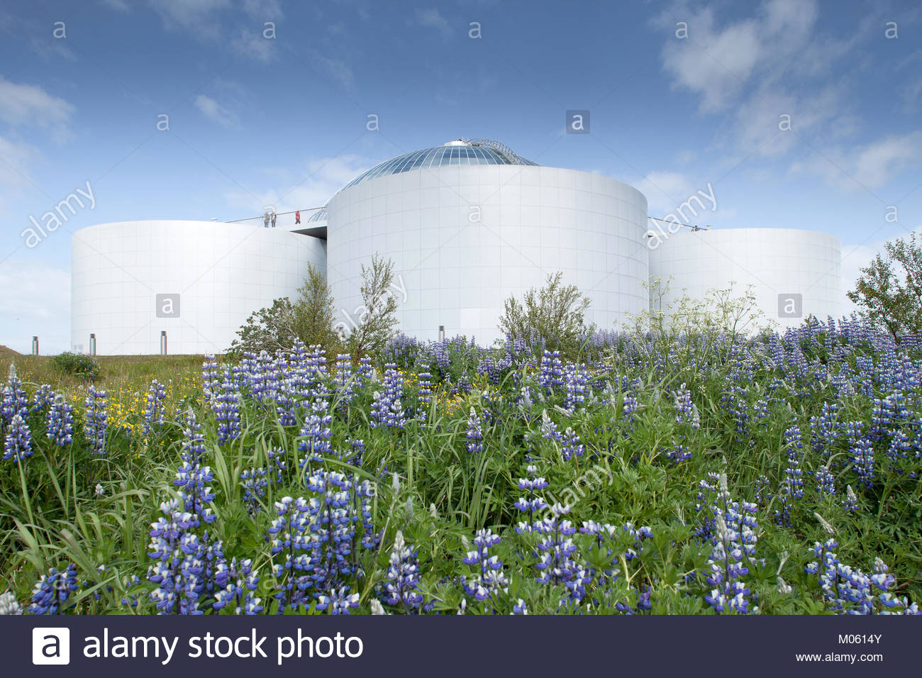 The hot water tanks of 'Perlan' provide geothermal energy to the city of Reykjavik, Iceland - Stock Image