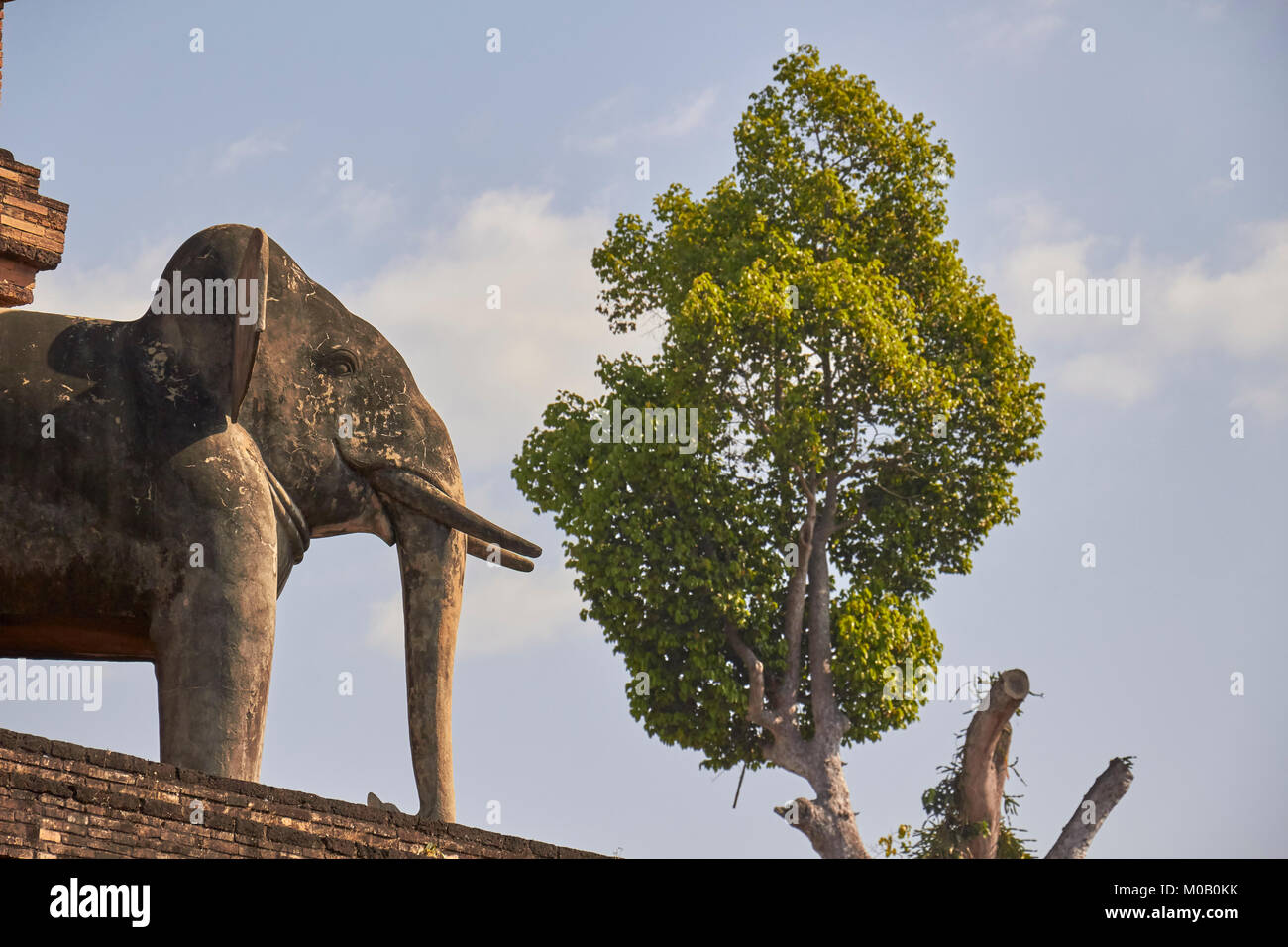 Elephant carvings, Wat Chedi Luang temple and grounds, Chiang Mai, Thailand - Stock Image