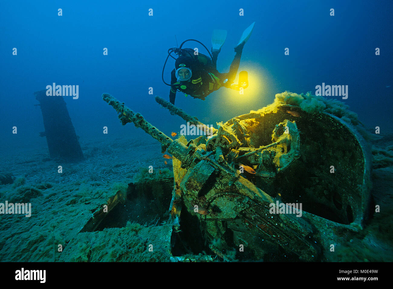Scuba diver at anti-aircraft gun of a North American B-25 Mitchell bomber, crashed at 2nd world war, Aleria, Corse, - Stock Image