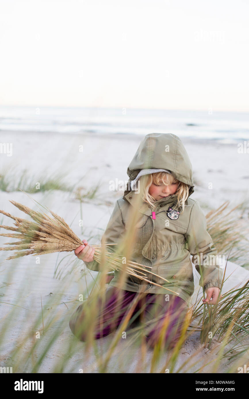 Girl playing with grass on Sandhammaren in Sweden - Stock Image