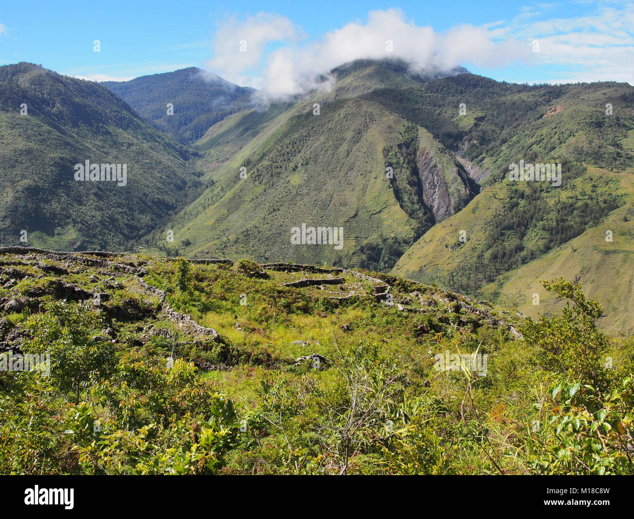 Gardens bordered by rocks in the Baliem valley, West Papua, Indonesia - Stock Image