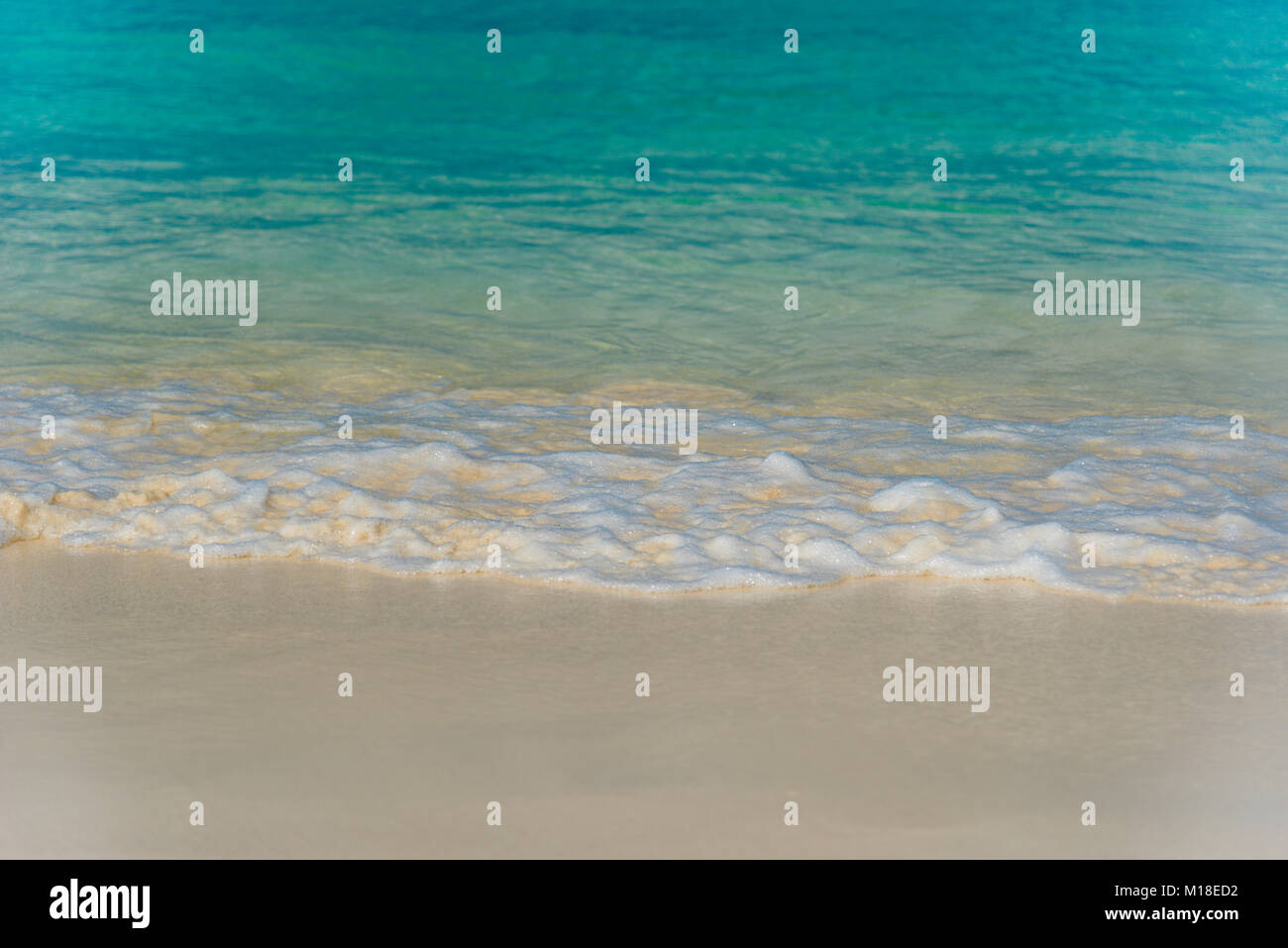 Eagle Beach Aruba Stock Photos Amp Eagle Beach Aruba Stock
