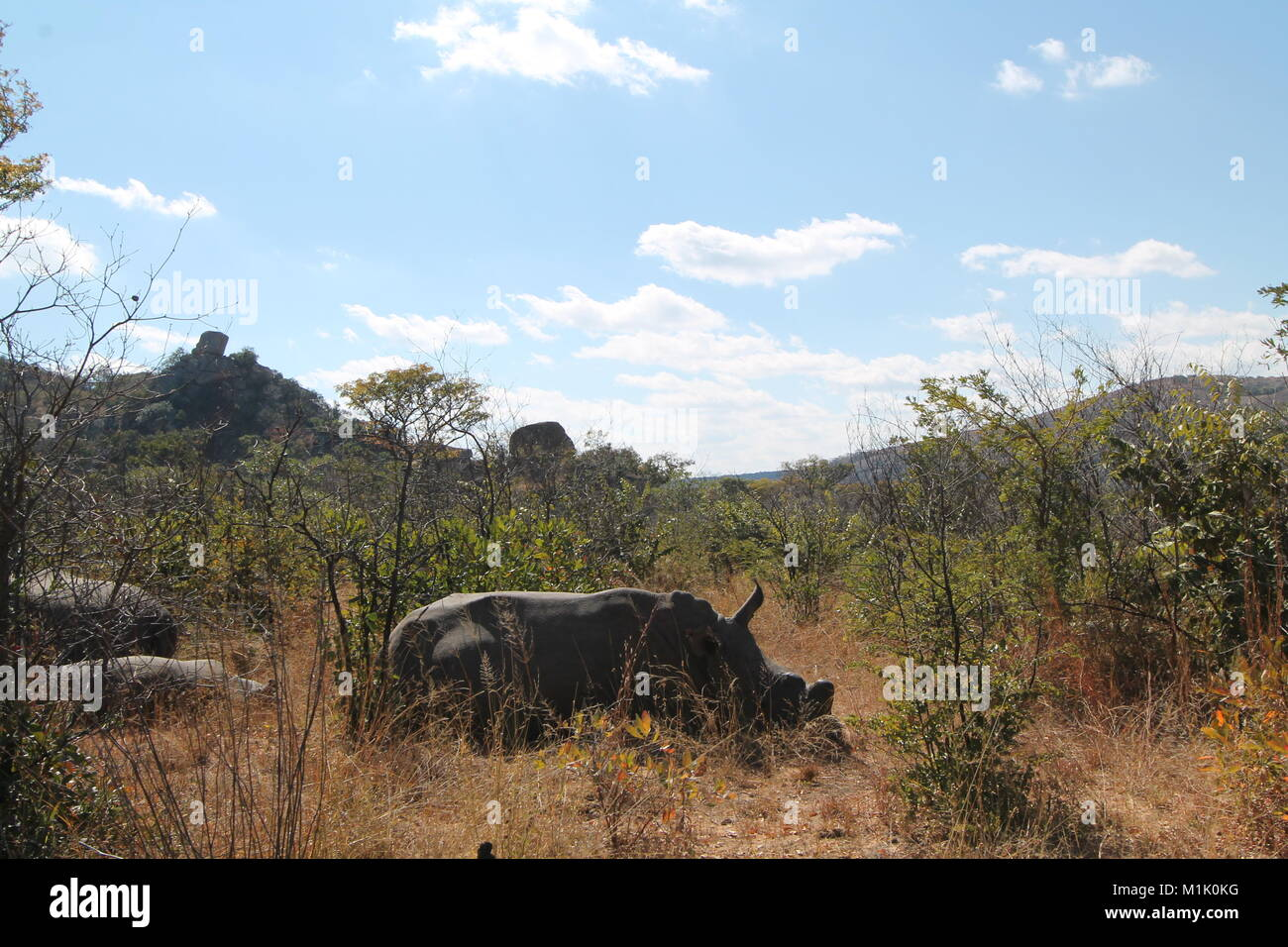 images of africa - Stock Image