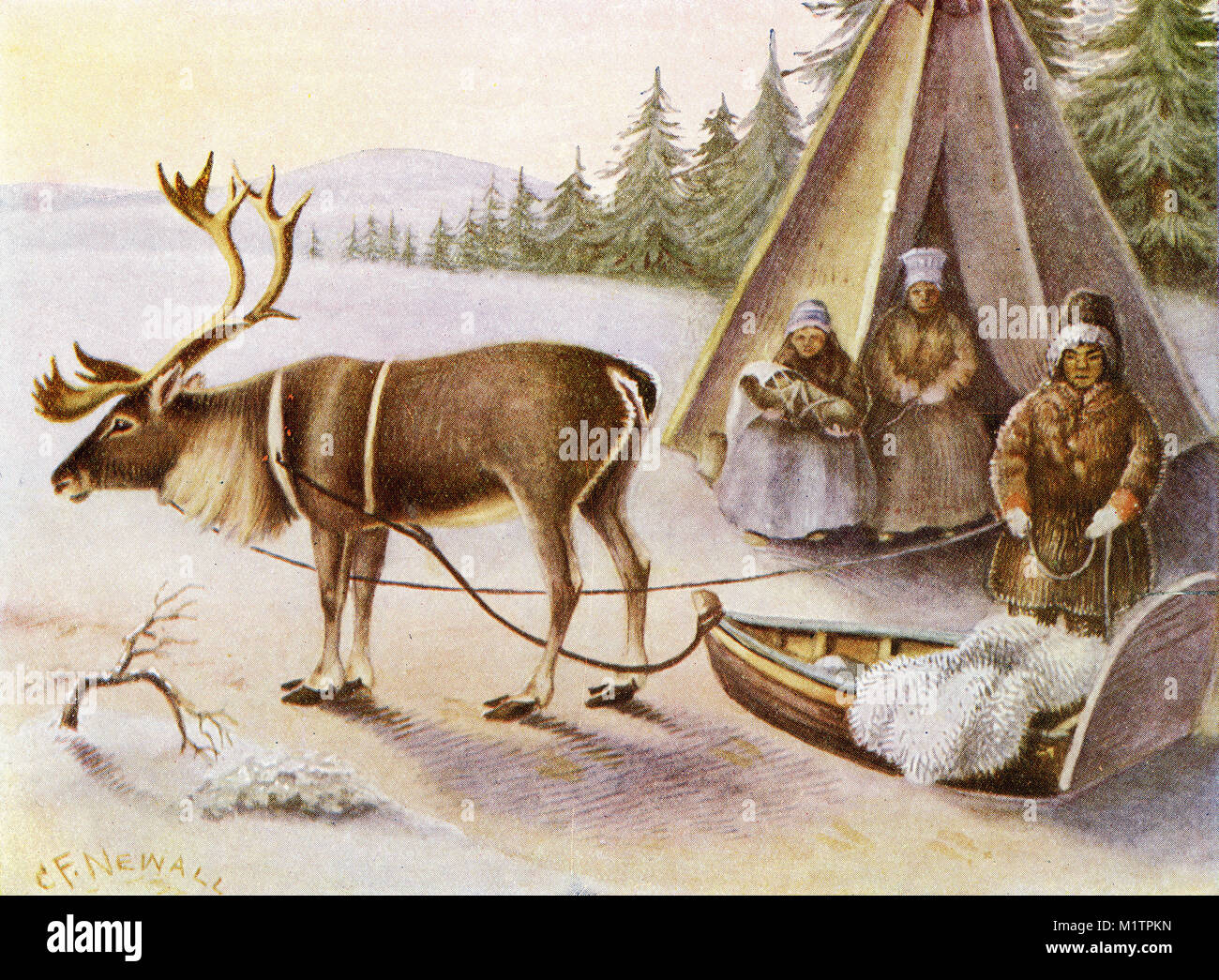 Halftone illustration of Lapplanders with a reindeer at their camp, circa 1900. The baby has been laced into an - Stock Image
