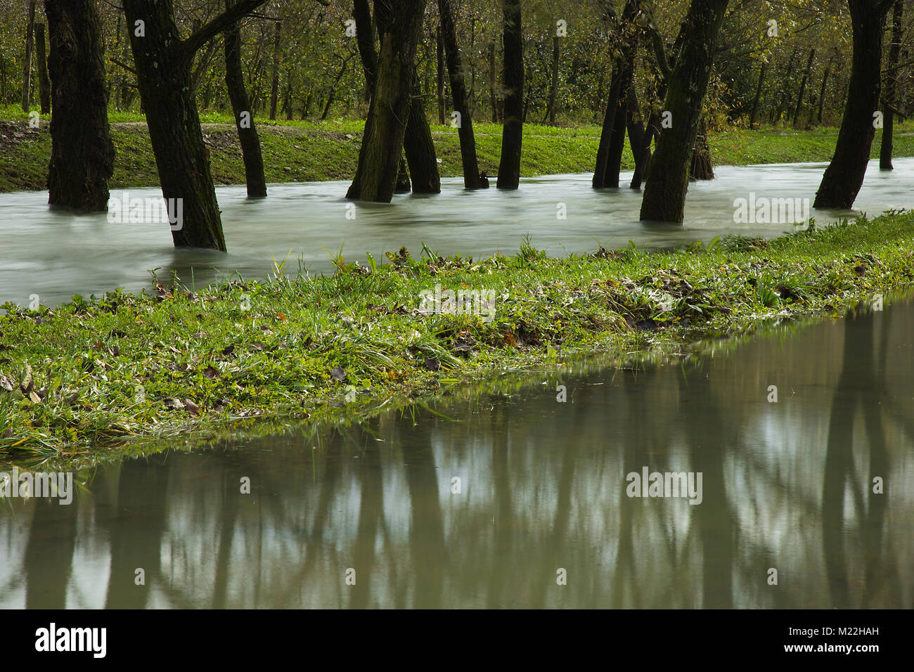 Floods - river overflows its banks and flooded forest and field - Stock Image