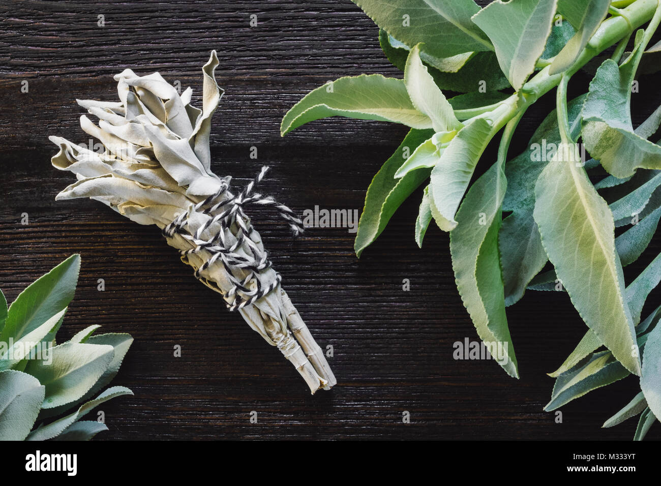 Fresh Sage on Dark Table with Smudge Bundle - Stock Image