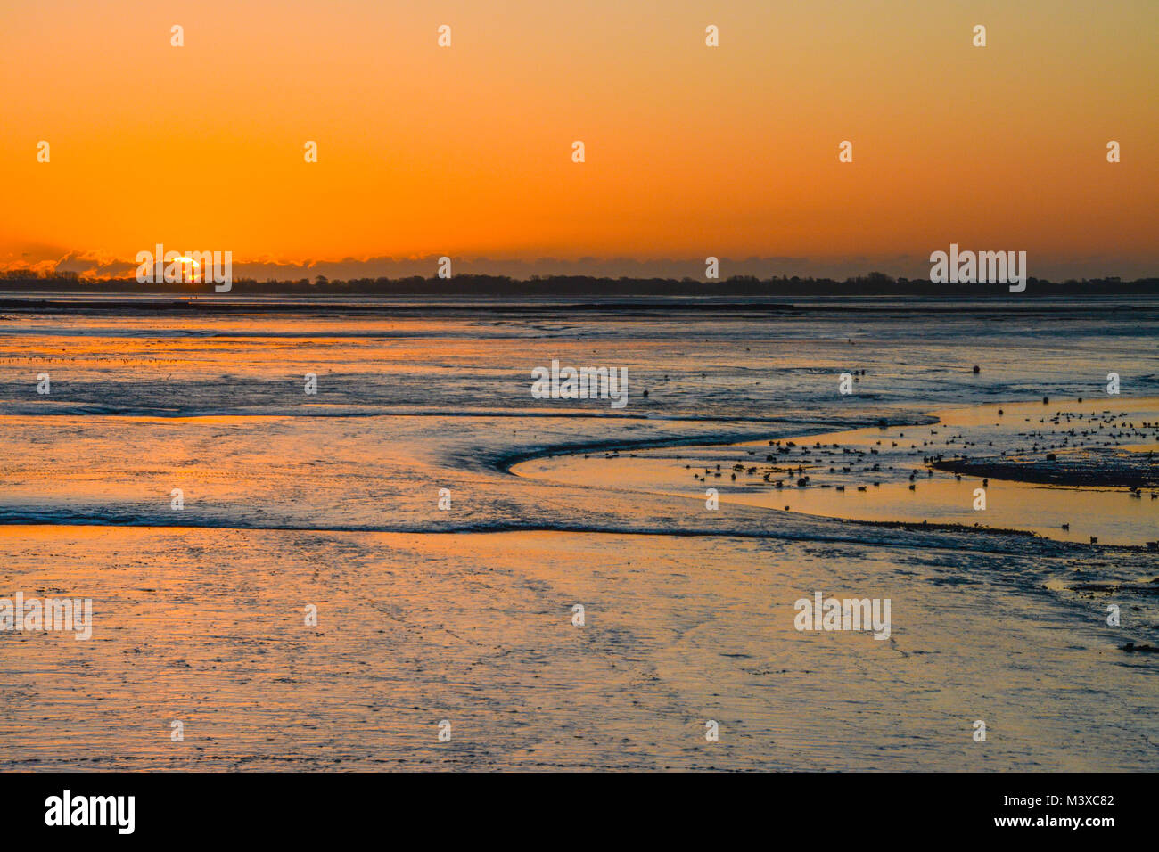 winter-sunrise-over-coastal-mudflats-at-farlington-marshes-nature-M3XC82.jpg