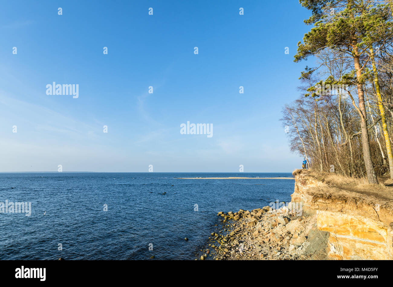 Estonian Baltic Sea coast, the precipice - Stock Image