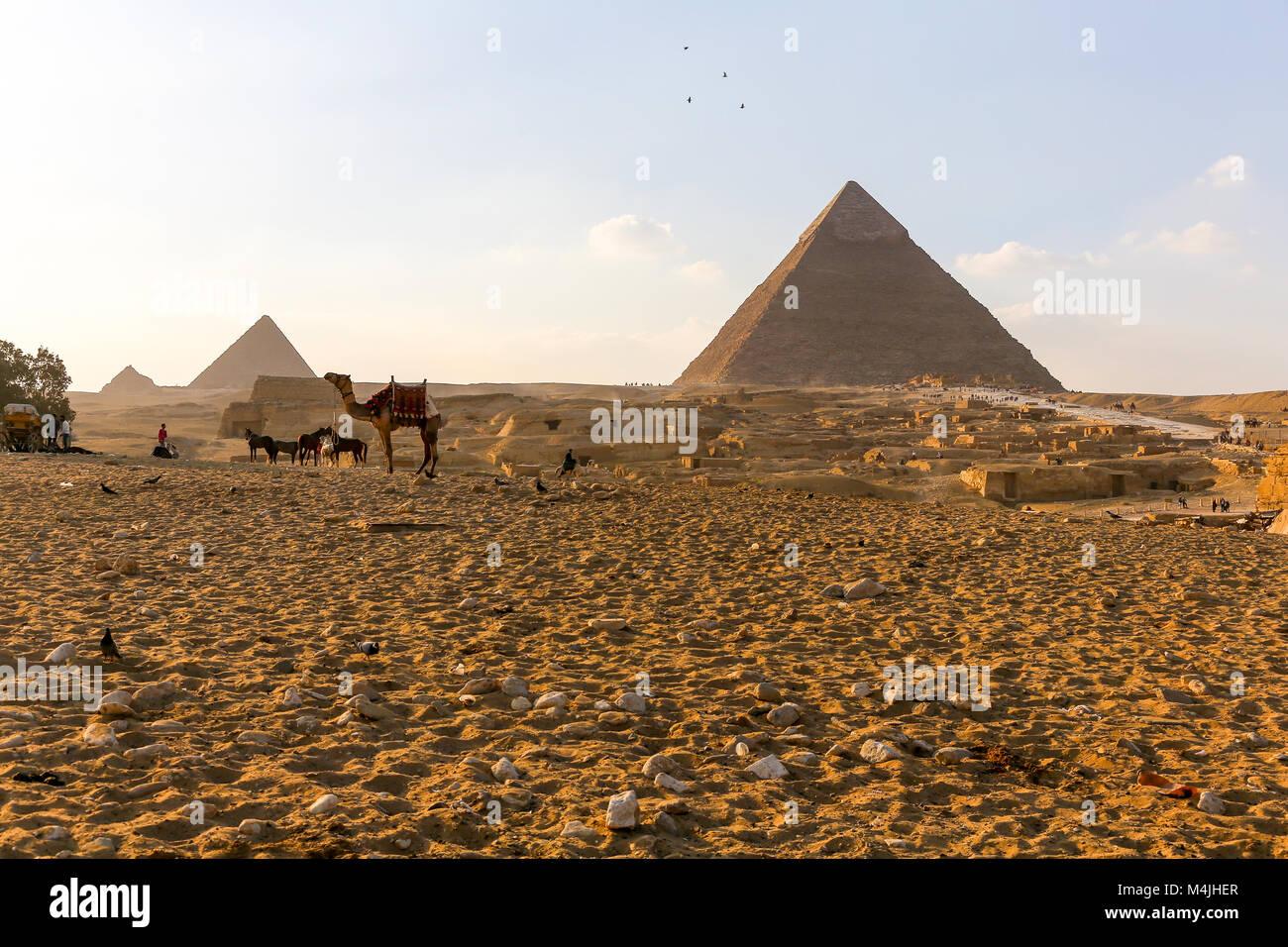pyramids-giza-egypt-north-africa-M4JHER.jpg