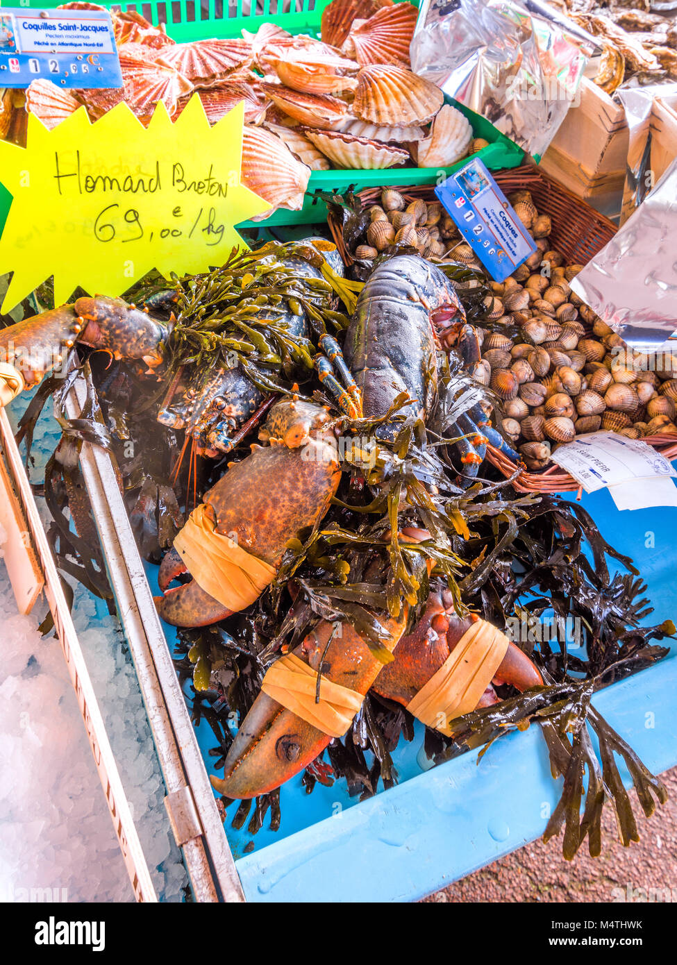 Live lobster on market stall - France. - Stock Image