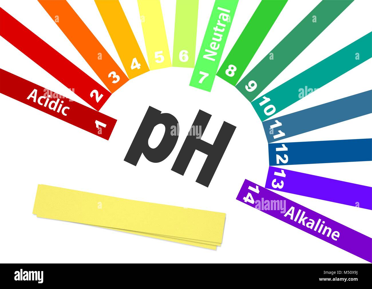 ph scale  acid-base balance  scale for chemical analysis acid base   colorful graph for test