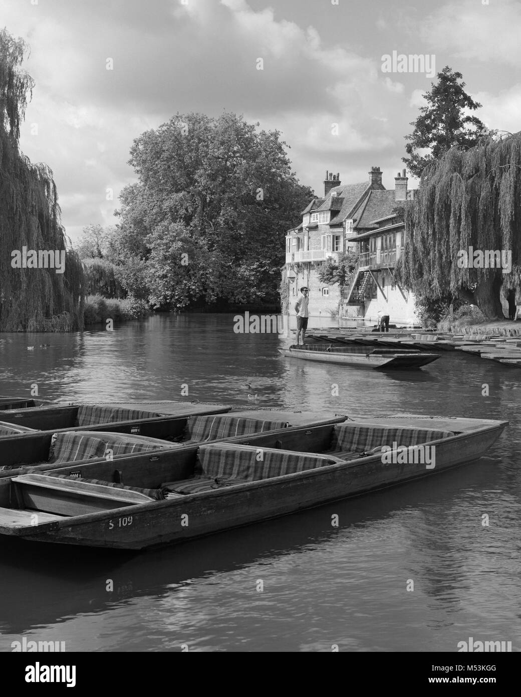 Punts moored on the River Cam by the Old Granary of Darwin College Cambridge - Stock Image