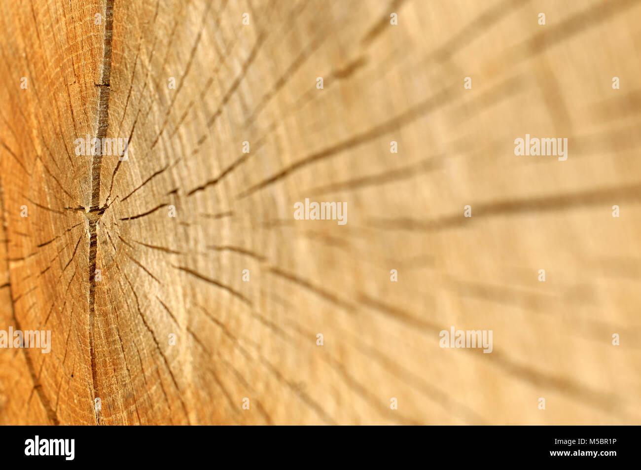 Holzmaserung Hervorheben rohstoff stock photos rohstoff stock images alamy