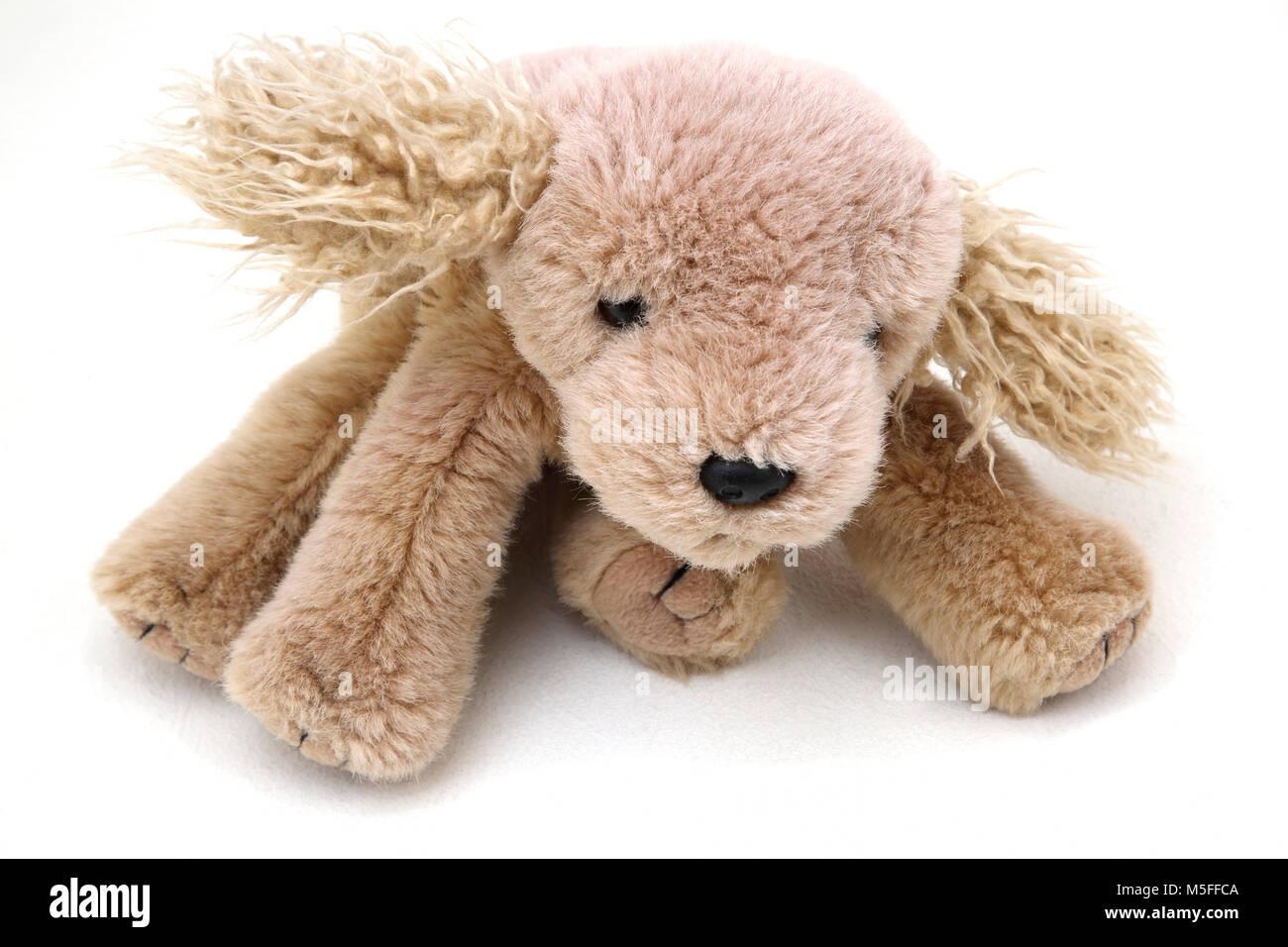 Ty beanie baby dog stock photo alamy jpg 1300x956 Beanie baby dog ea4b36e5ac19