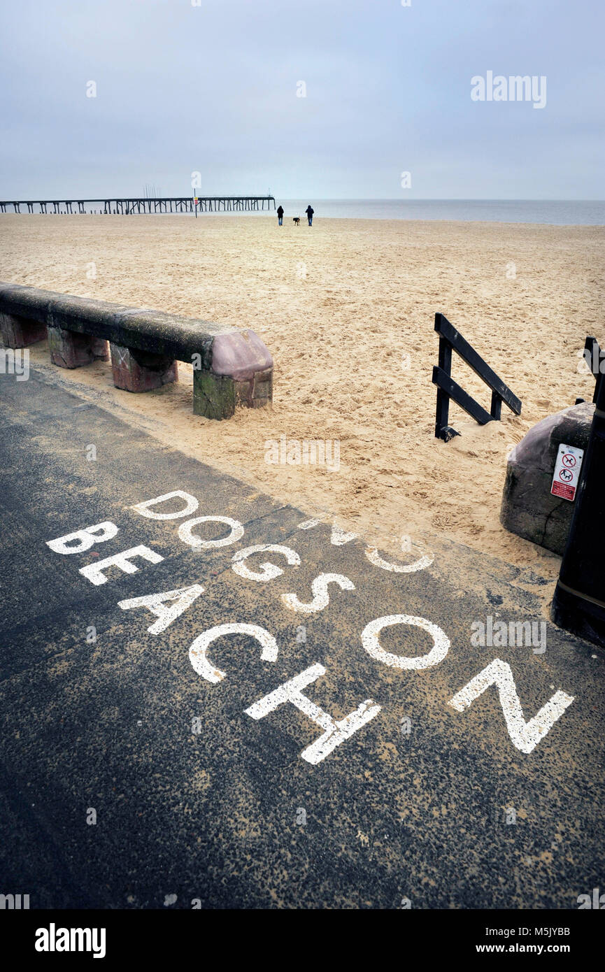 dog owners flouting the law lowestoft, suffolk uk - Stock Image