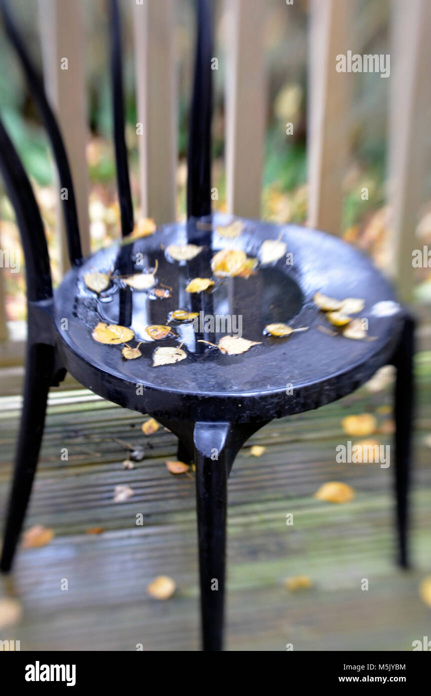 metal garden chair covered in wet fallen leaves - Stock Image