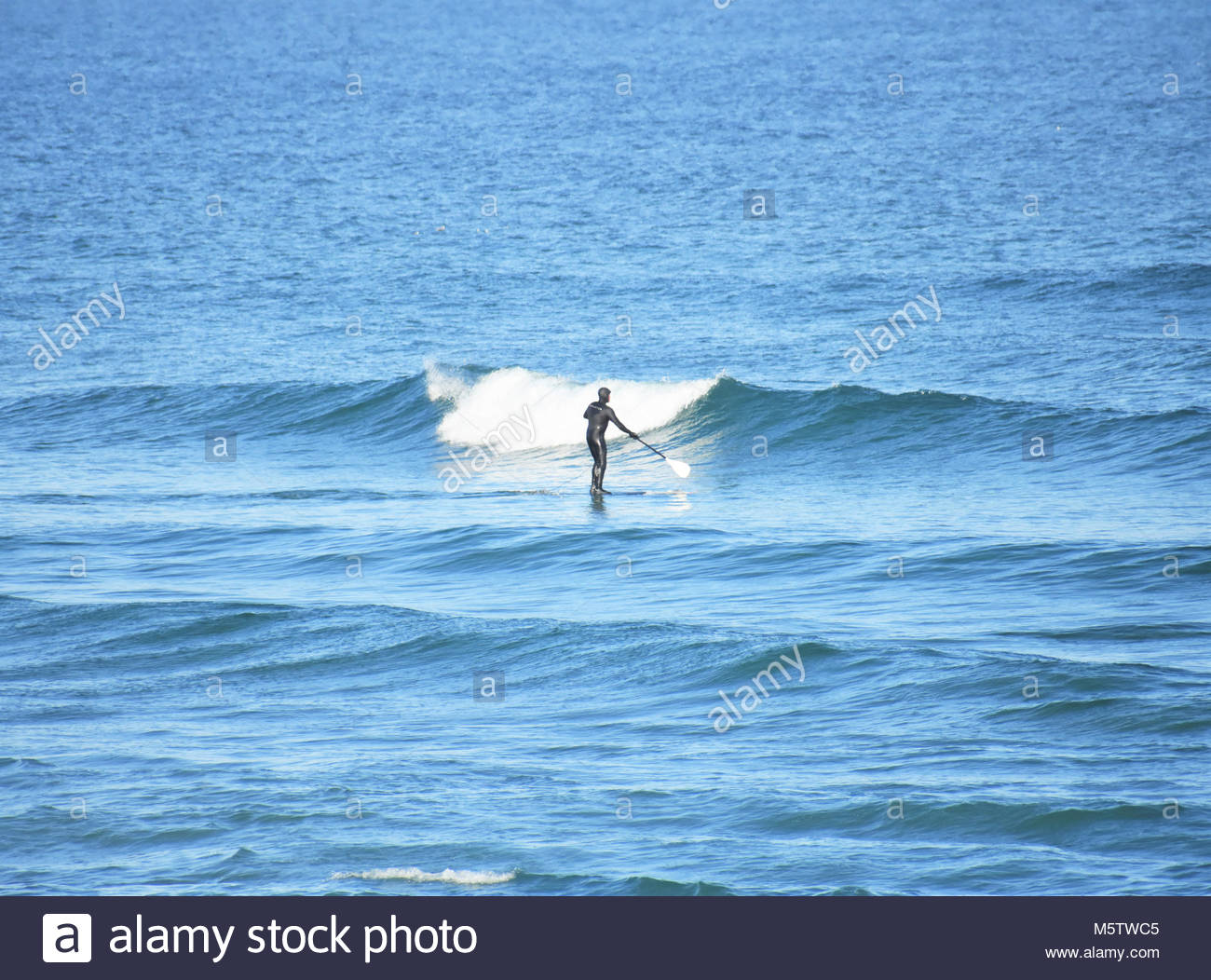 Brave, solo surfer facing the waves alone in Ogunquit, Maine - Stock Image