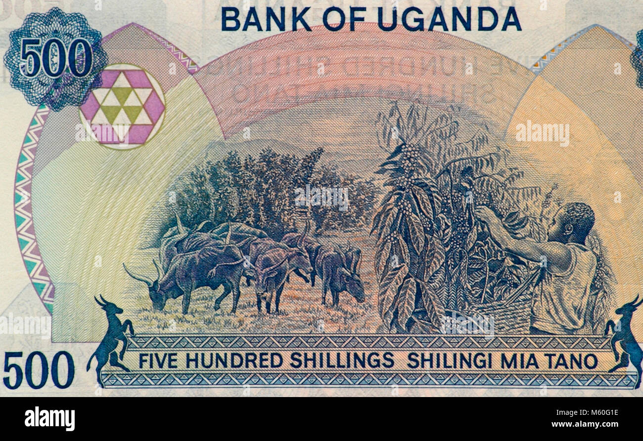 Uganda Five Hundred Shilling Bank Note - Stock Image