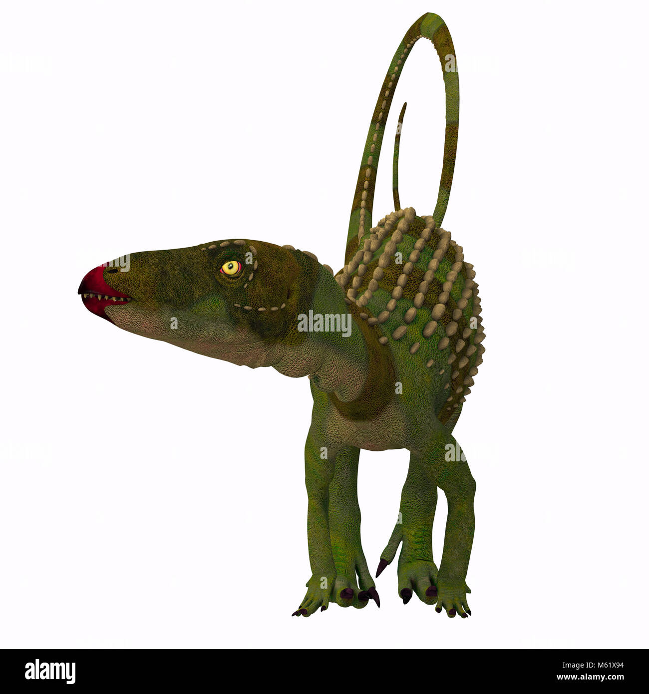 Scutellosaurus was an armored herbivore dinosaur that lived in Arizona, USA during the Jurassic Period. - Stock Image