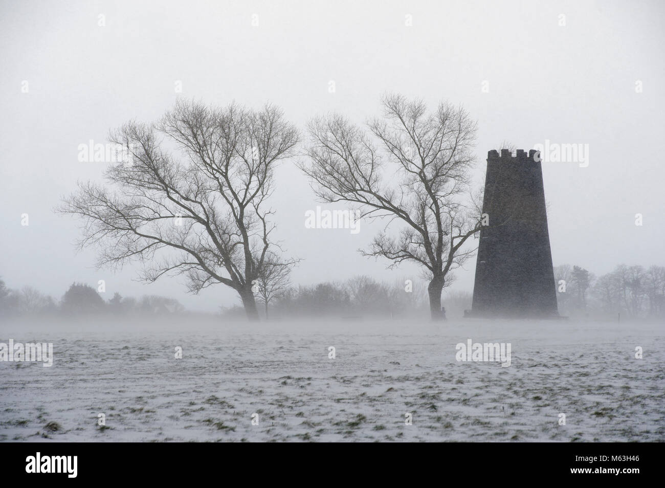 Beverley, UK. 28th Feb, 2018. A dog walker shelters behind a tree in blizzard conditions during 'The Beast From - Stock Image