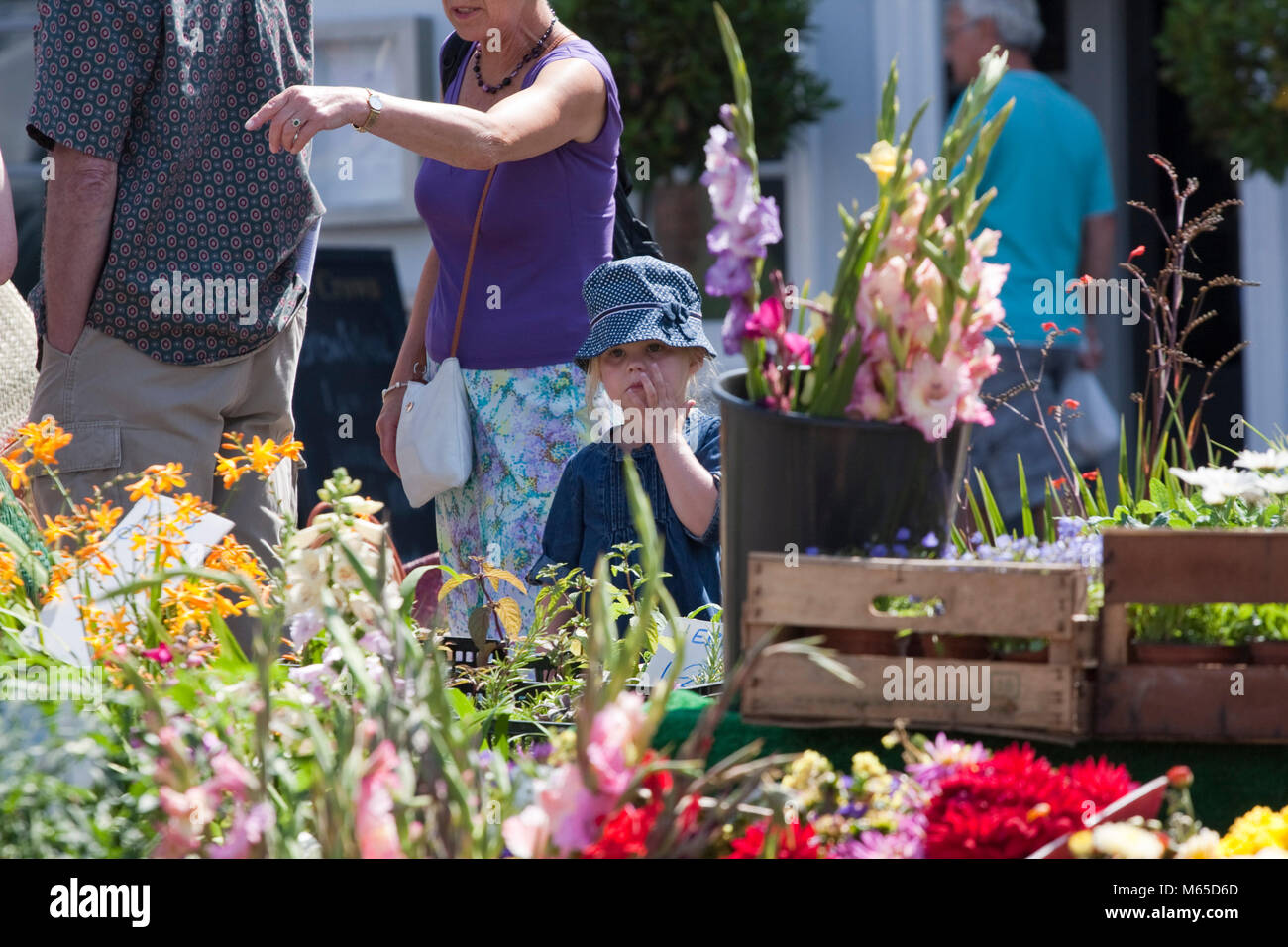 Small girl in a blue hat overlooks a market plant stall - Stock Image