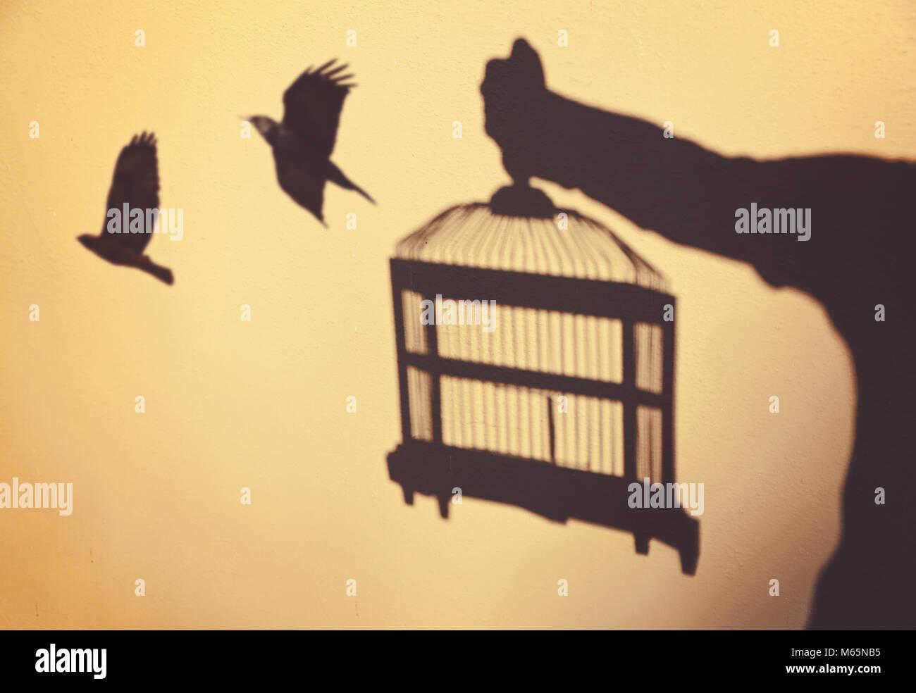 Magnificent Birds In Flight Wall Decor Adornment - The Wall Art ...