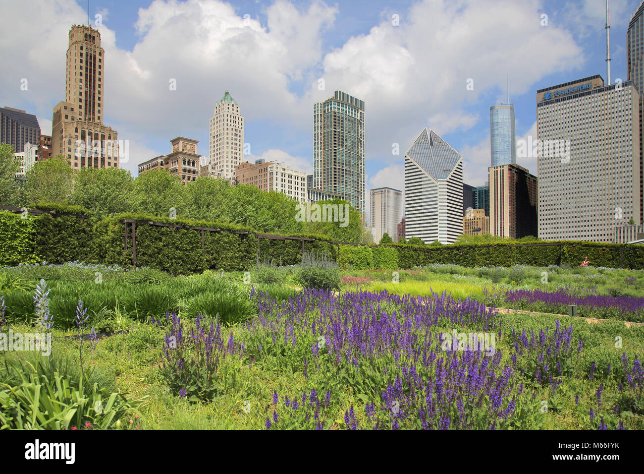 the maggie daley park chicago Illinois Stock Photo
