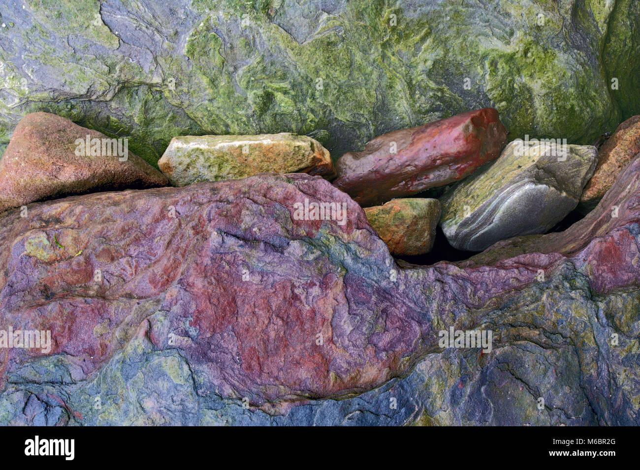 A close up view of colorful rocks on St Aidan's beach along the Northumberland coast near Bamburgh, England,UK - Stock Image