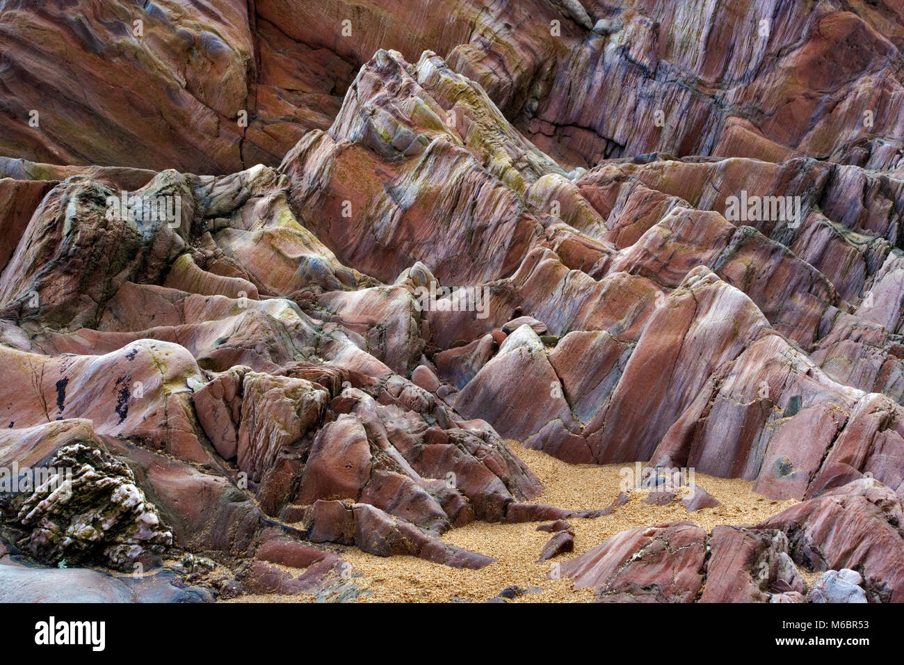 A view of the intricate detail and varied tonal range of a rock formation on Bigbury on Sea beach in Devon, UK. - Stock Image