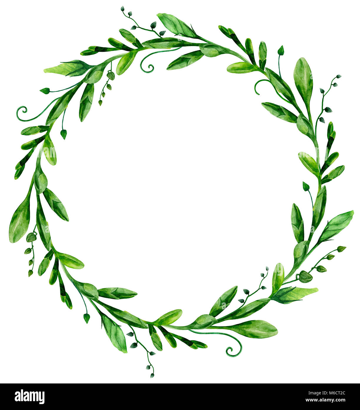 Watercolor greenery wreath frame. Green arrangement clip art - Stock Image