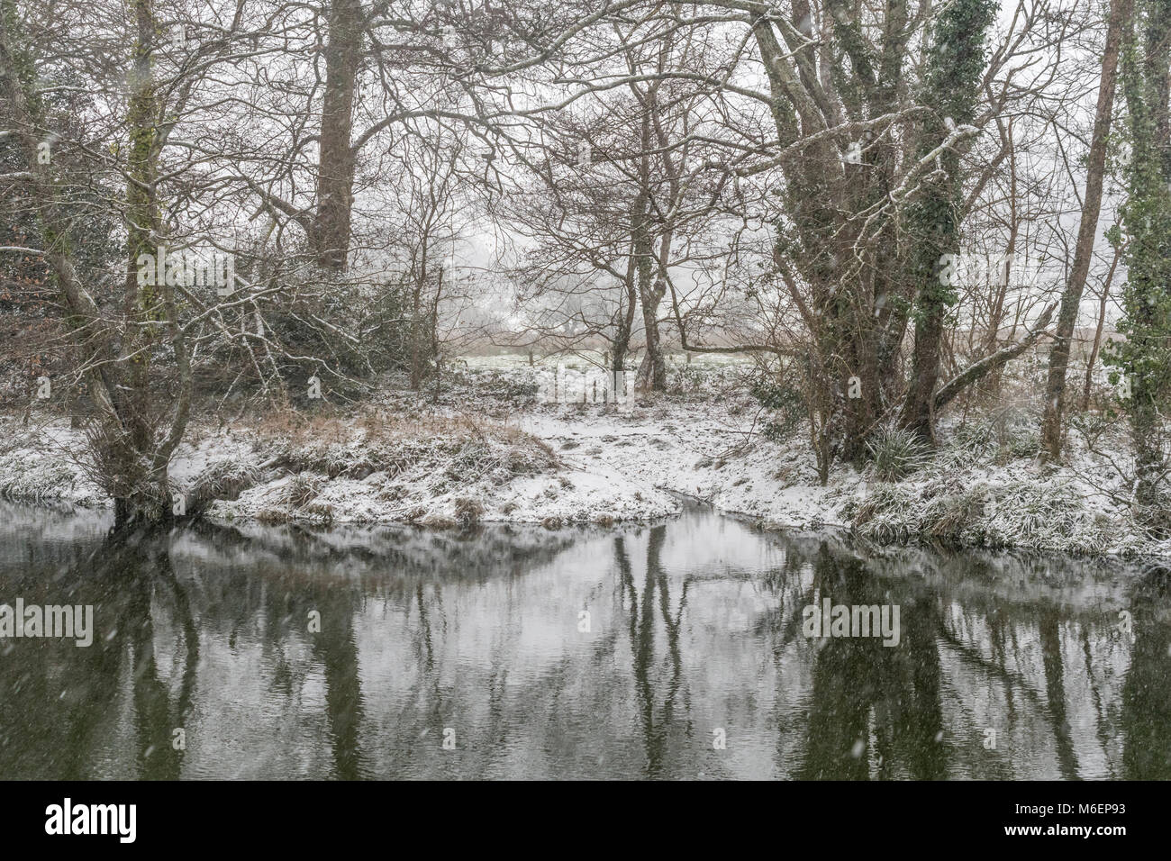 Snow dusted banks of the River Fowey at the Cornish town of Lostwithiel. - Stock Image