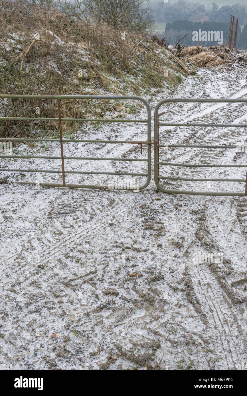Metal farm gate during the snowy conditions of the 2018 'Beast from the East'. - Stock Image