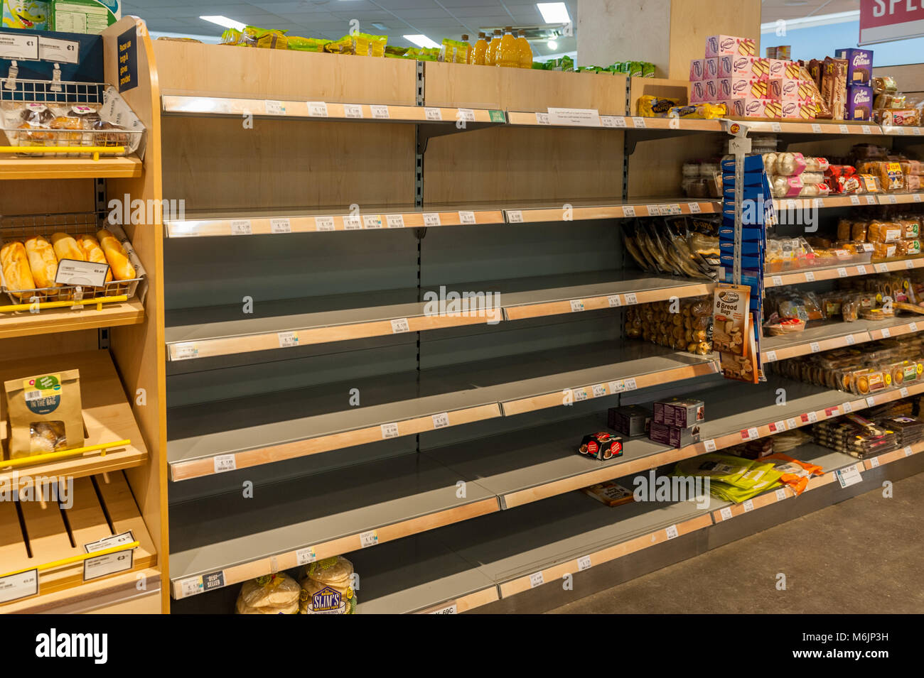 empty-bread-shelves-in-centra-supermarket-schull-county-cork-ireland-M6JP3H.jpg