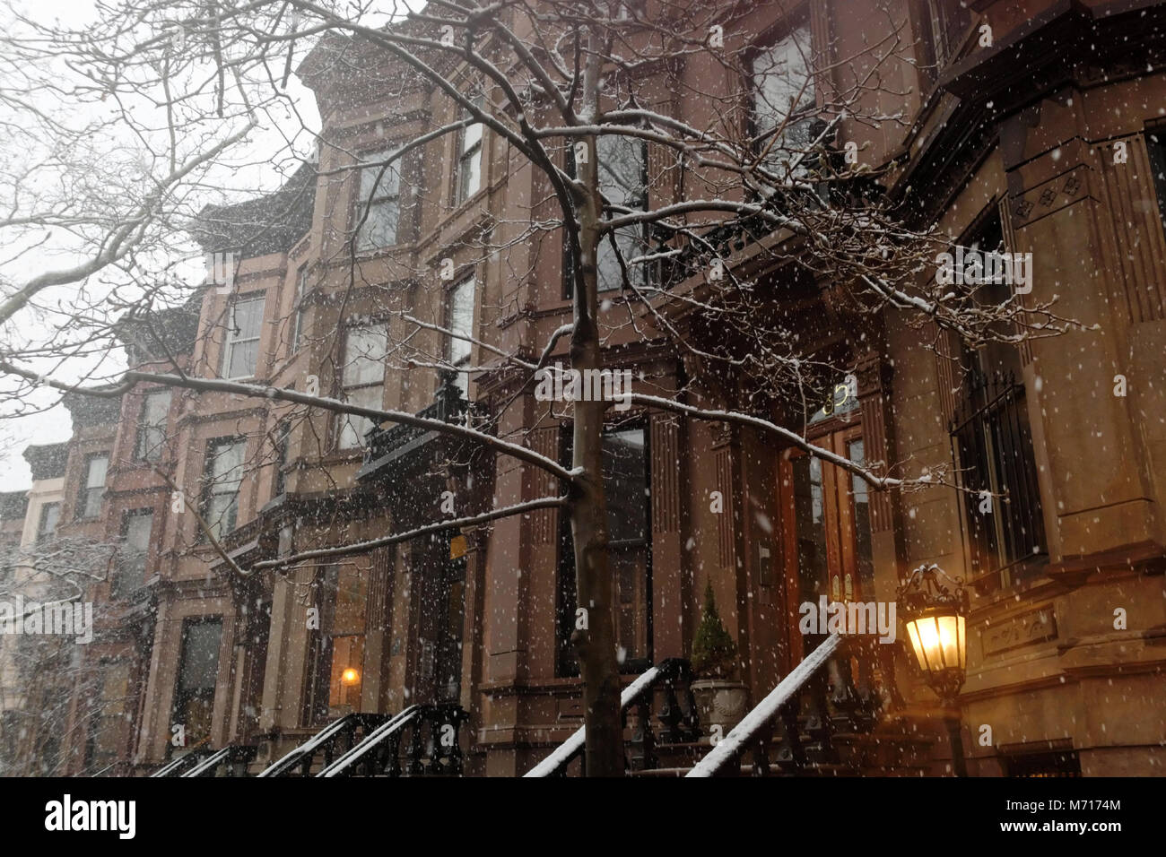 Brooklyn, USA. 7th March, 2018. Brownstones and trees in Brooklyn during the Nor'easter of March 7th, 2018. - Stock Image