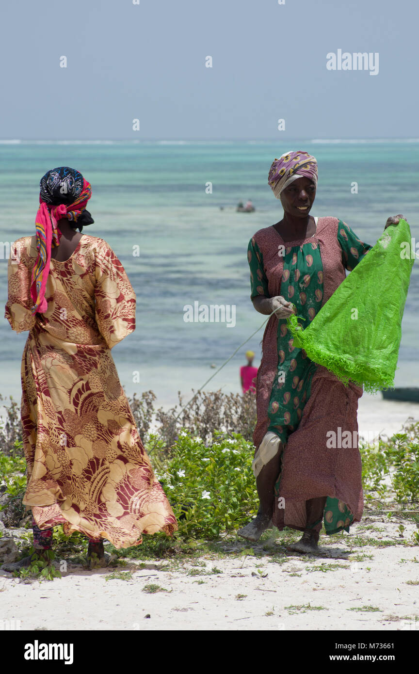 Two Swahili women in Zanzibar on Jambiani Beach dressed in vivid coloured clothing chatting and farming seaweed - Stock Image