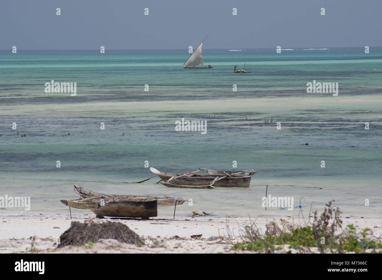 The turquoise waters of the Indian Ocean at low tide with beached boats, dhows, in the forground and a sailing boat - Stock Image