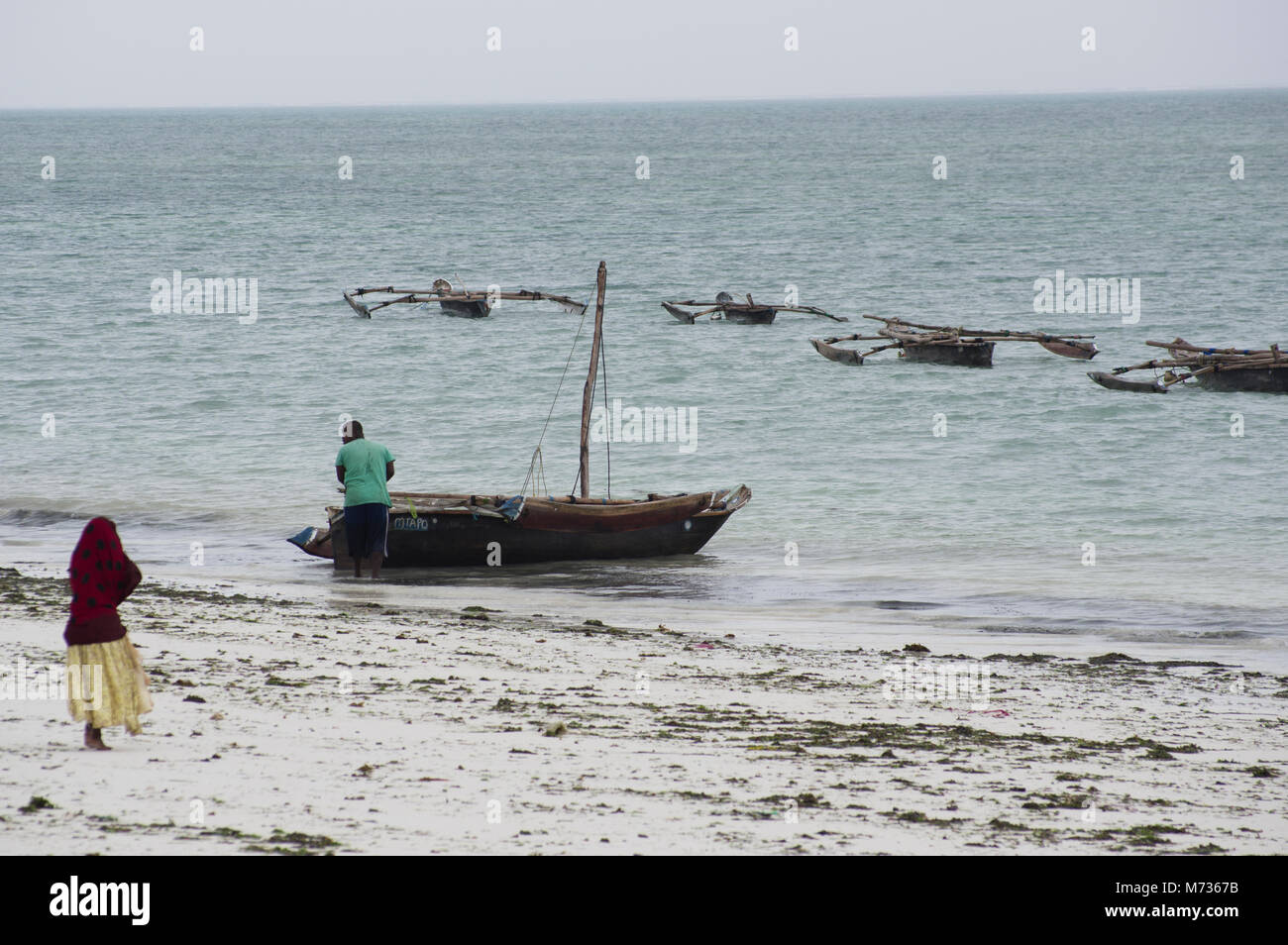 Traditional dhow fishing boats at low tide in Jambiani beach Zanzibar Tanzania with seaweed farmer woman and white - Stock Image