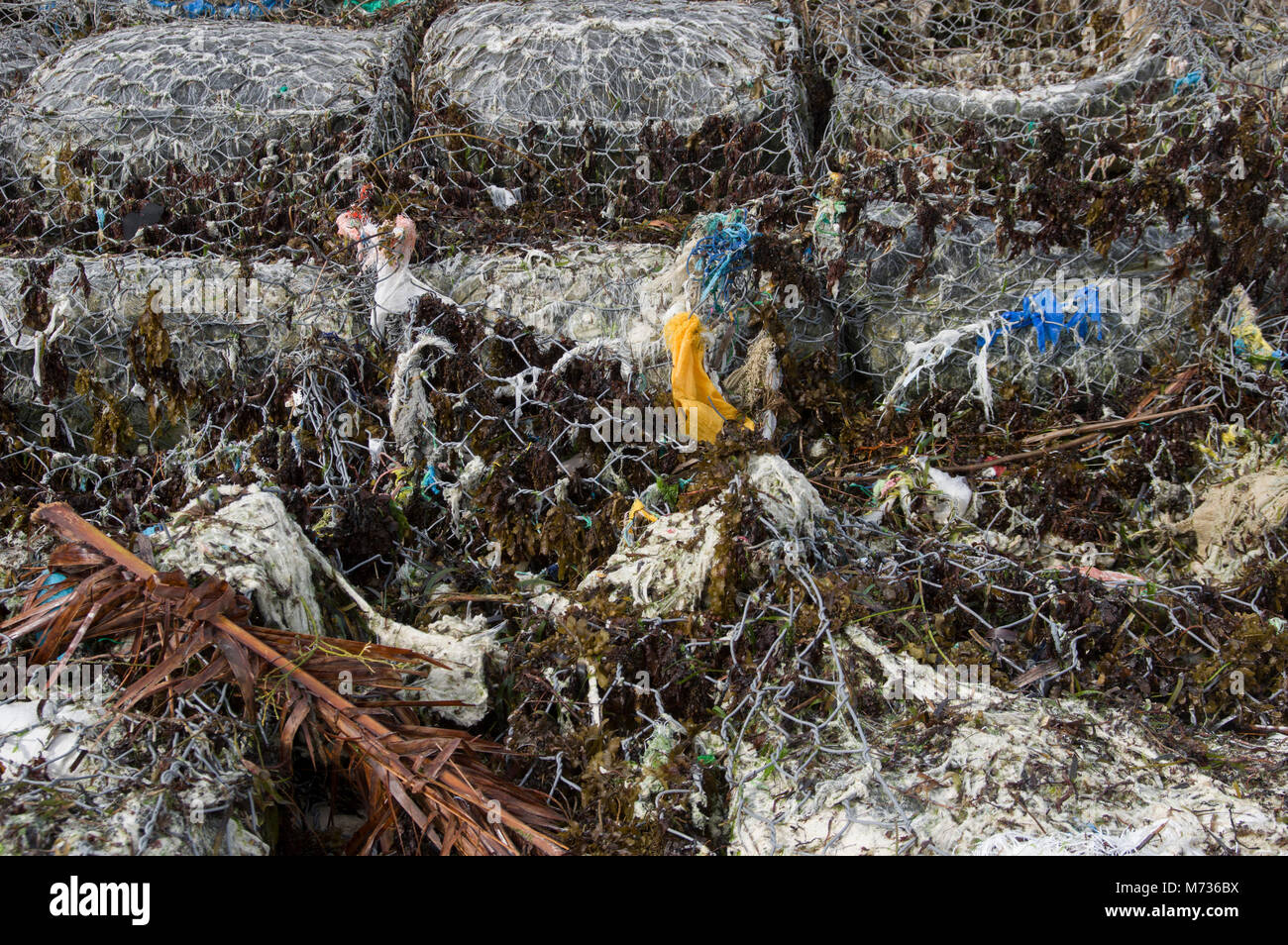 Plastic rubbish entwined in wire mesh and fishing nets on the beach in Jambiani Zanzibar Tanzania mixed with other - Stock Image